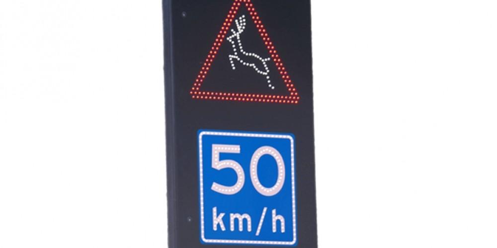 Traffic2000